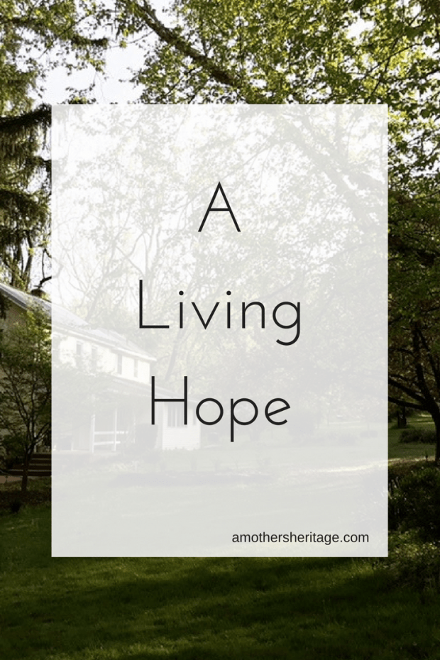 A Living Hope |When life doesn't go as planned