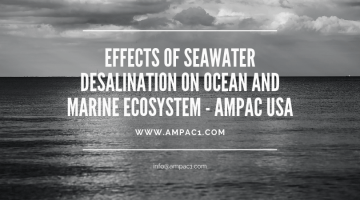 Effects Of Seawater Desalination On Ocean And Marine Ecosystem - AMPAC USA