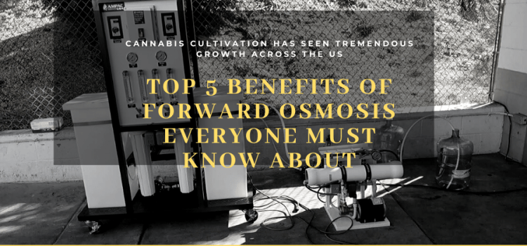 Top 5 Benefits of Forward Osmosis Everyone Must Know About