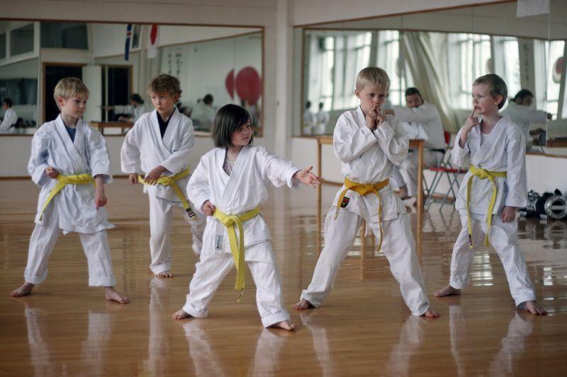 Niños en clase de karate