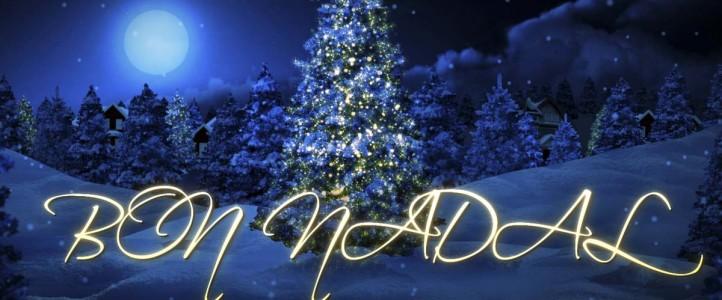Bon nadal