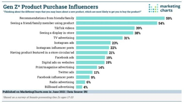 Gen Z Product Purchase Influencers