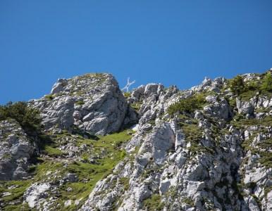 Tinisa-Cresta del cielo