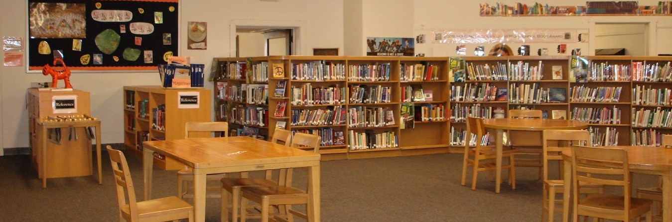 LIBRARY PRIMARY SECTION