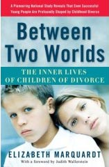 Cover art for Between Two Worlds