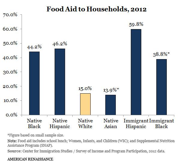 FoodAidAllHouseholds