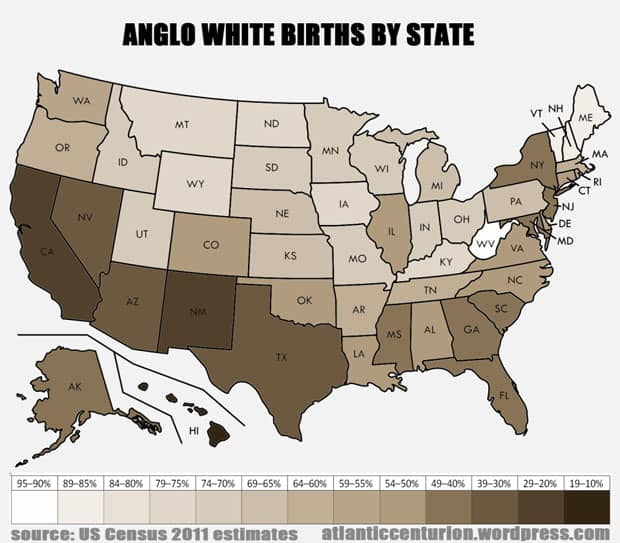 Anglo White Births by State