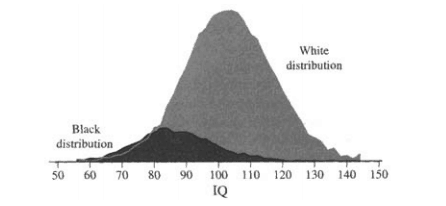 Black and White Bell Curve