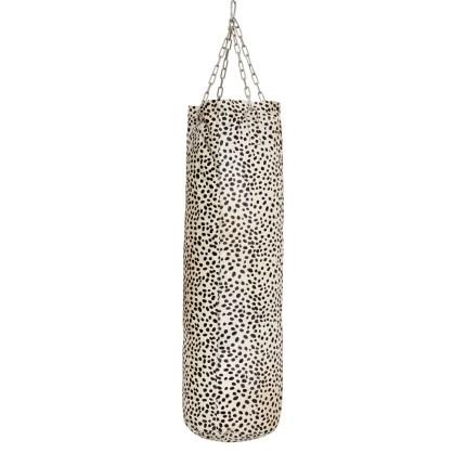 Dalmatier Amsterdam boxing company