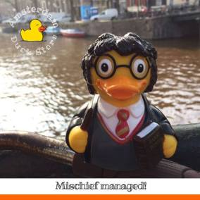 Harry Potter rubber duck Herengracht Amsterdam Duck Store