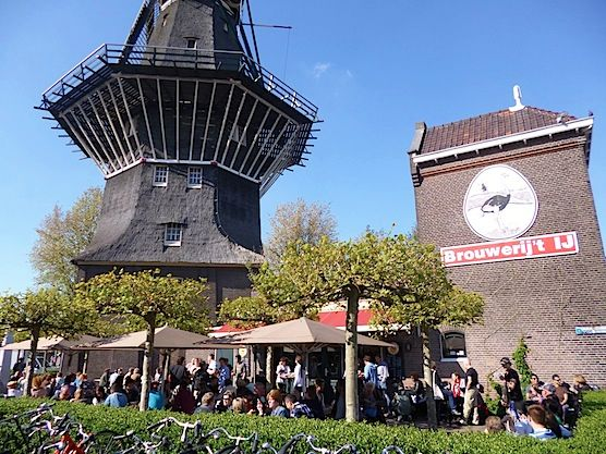 10 tips for hot summer days in Amsterdam. Amsterdam Brewery 't IJ