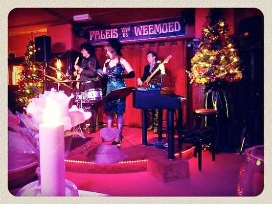 The dinner show at Paleis van de Weemoed includes live performance.
