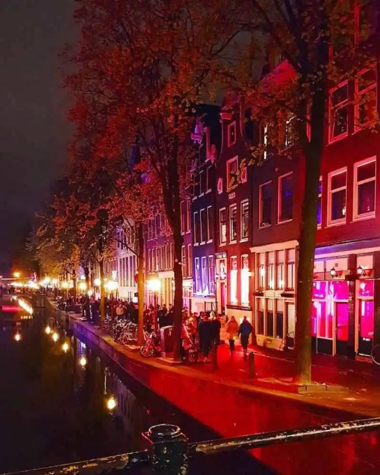 Best tours in Amsterdam