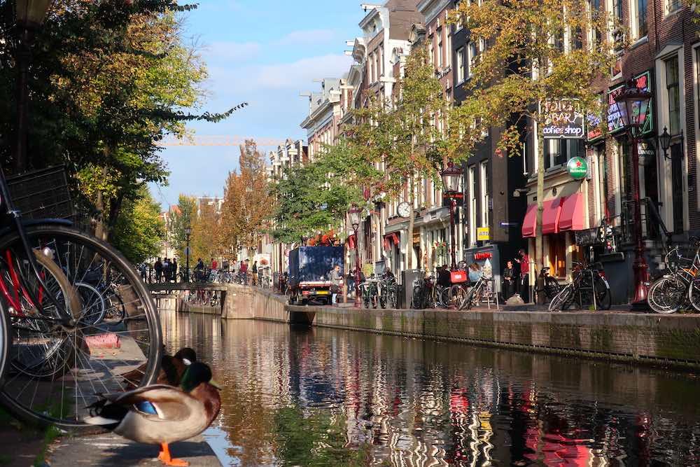 Holland autumn