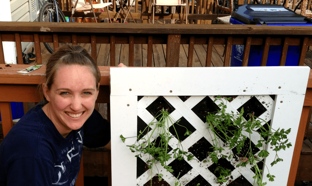 Vertical Garden Project: Putting It Together #DigIn
