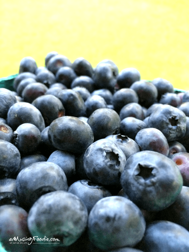 Fresh Maryland blueberries for the best blueberry cobbler EVER!