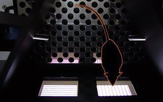 How to Get the Most out of Your Operant Training Chambers