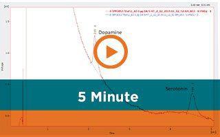 5-minute Analysis of Dopamine and Serotonin in Brain Microdialysate