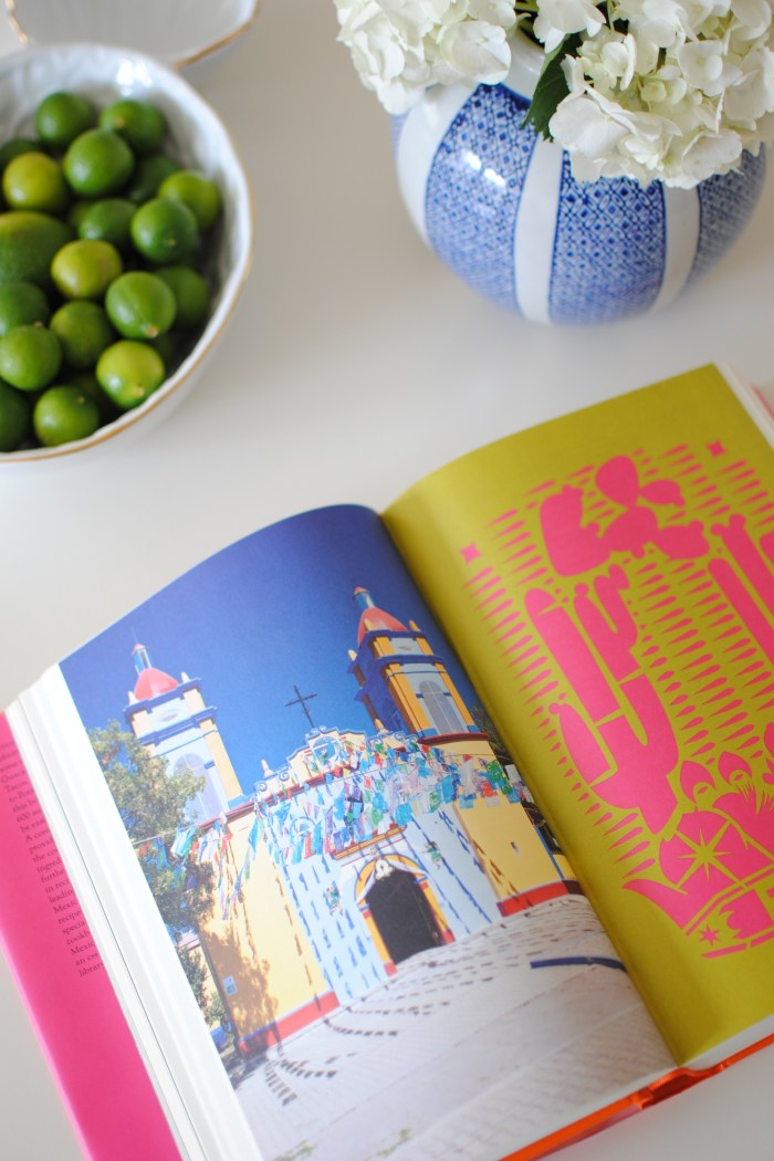 Mexico Cookbook Confessions