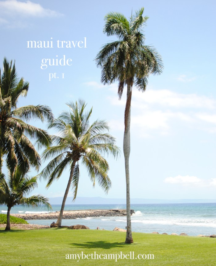 Maui Travel Guide Pt. 1 | amybethcampbell.com
