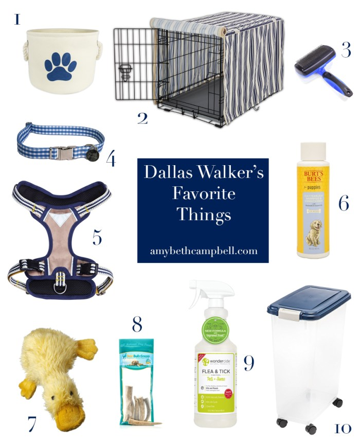 Dallas Walker's Favorite Things - amybethcampbell.com