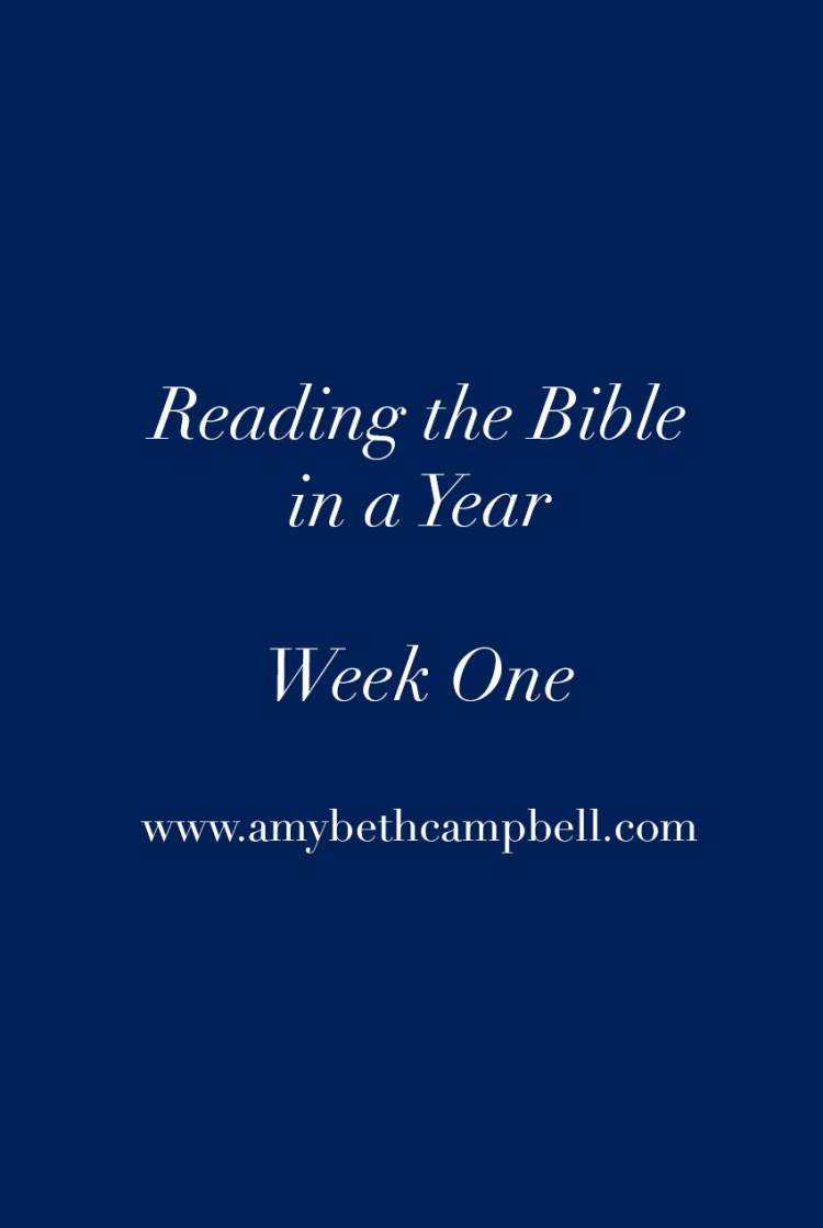 Bible in a Year // Week 1