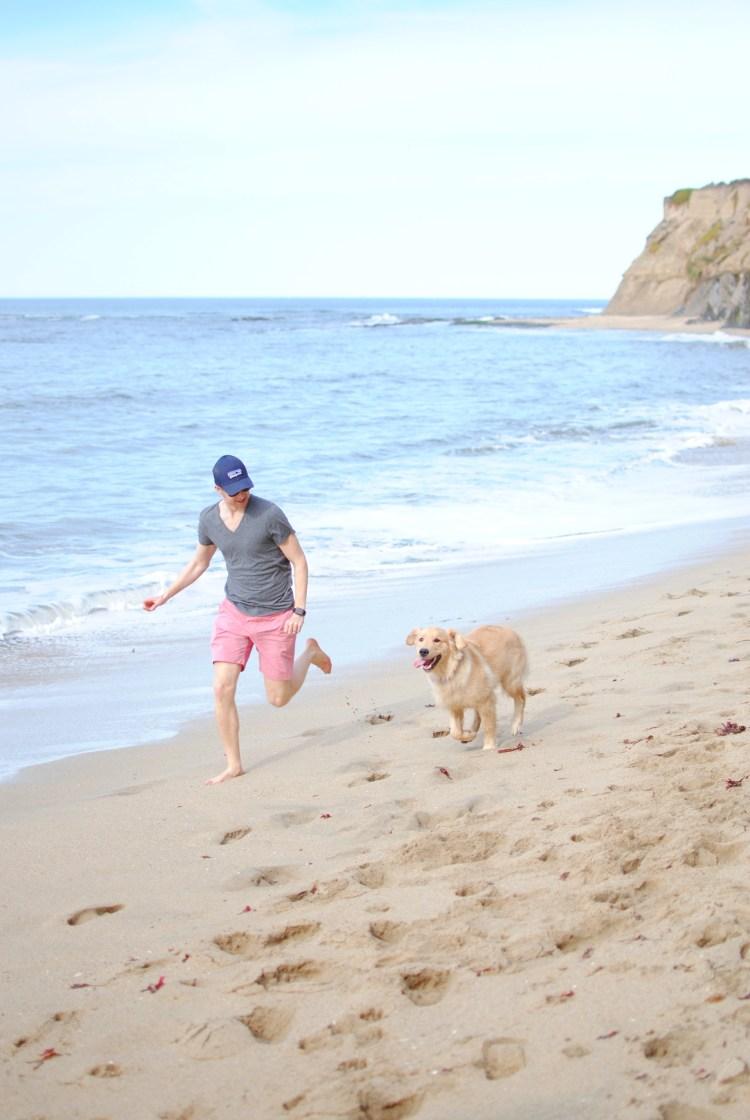 Sunday at Half Moon Bay - amybethcampbell.com