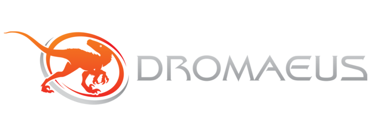 Dromaeus IT Services Web Copy Amy Boylan