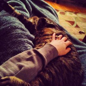 Couch, cat, hoodie, blanket = Necessary post-winter run recovery gear