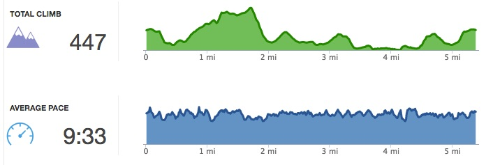 The elevation of one of my rural runs, along with my pace. I think I did pretty well keeping my speed even when the roads weren't!