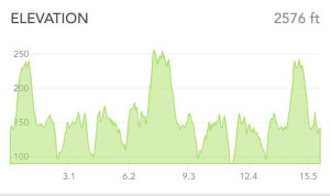 Elevation profile from my long run. FUN.