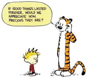 Calvin and Hobbes Author: Bill Watterson