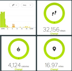 Is there anything so rewarding as the Fitbit dashboard on a day you ran a half marathon?