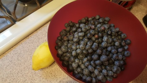 Lots of fresh blueberries ready for lemon juice and sugar.