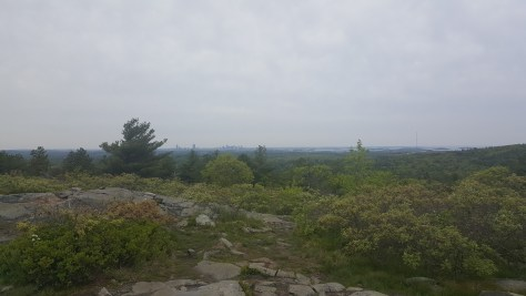 View from the top of the trail: Boston in the distance
