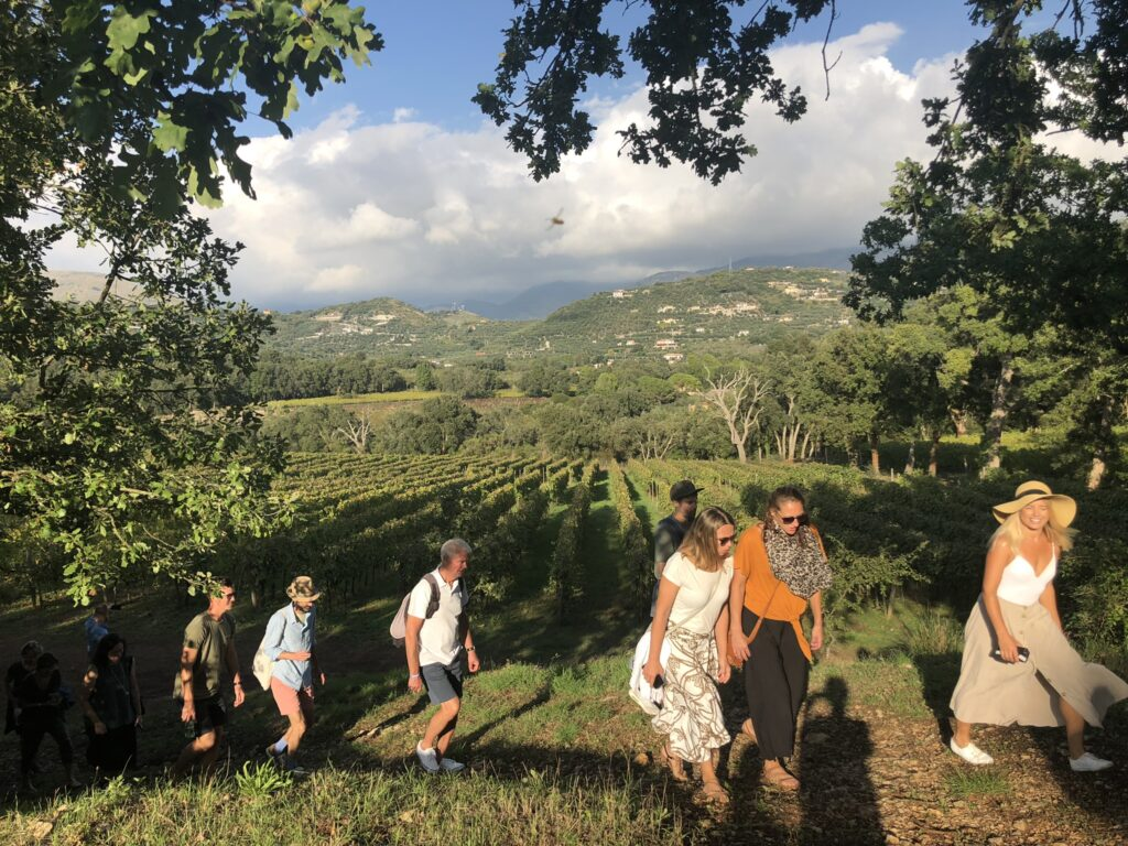 People walking in the vineyards at Monti Cecubi winery in Itri and Sperlonga