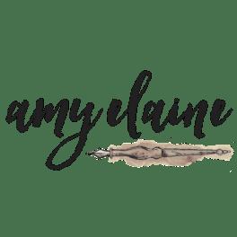 Amy-elaine-minsitries-logo