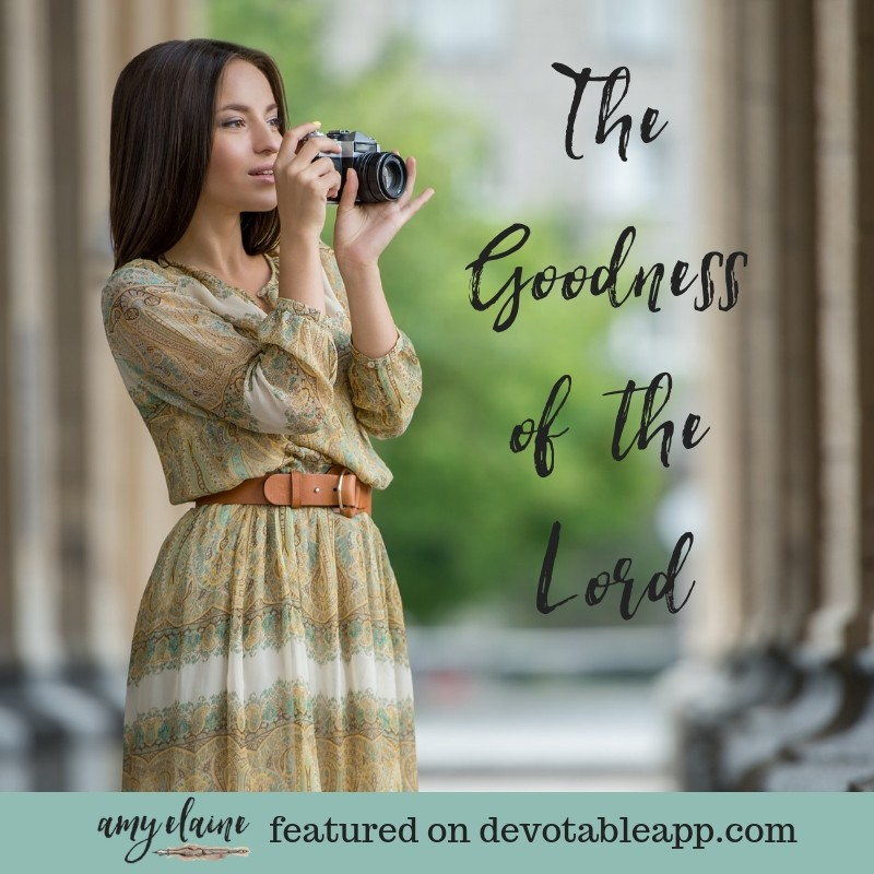 goodness-lord-land-living-devotional
