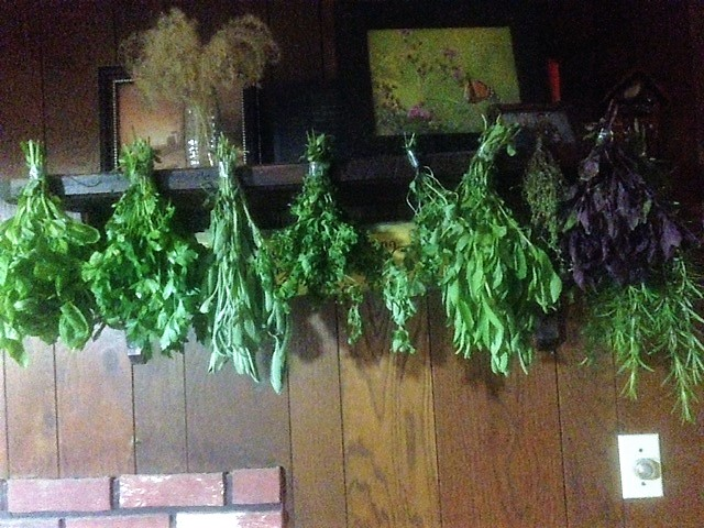 How to dry herbs.