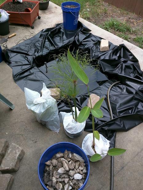 Adding Plants