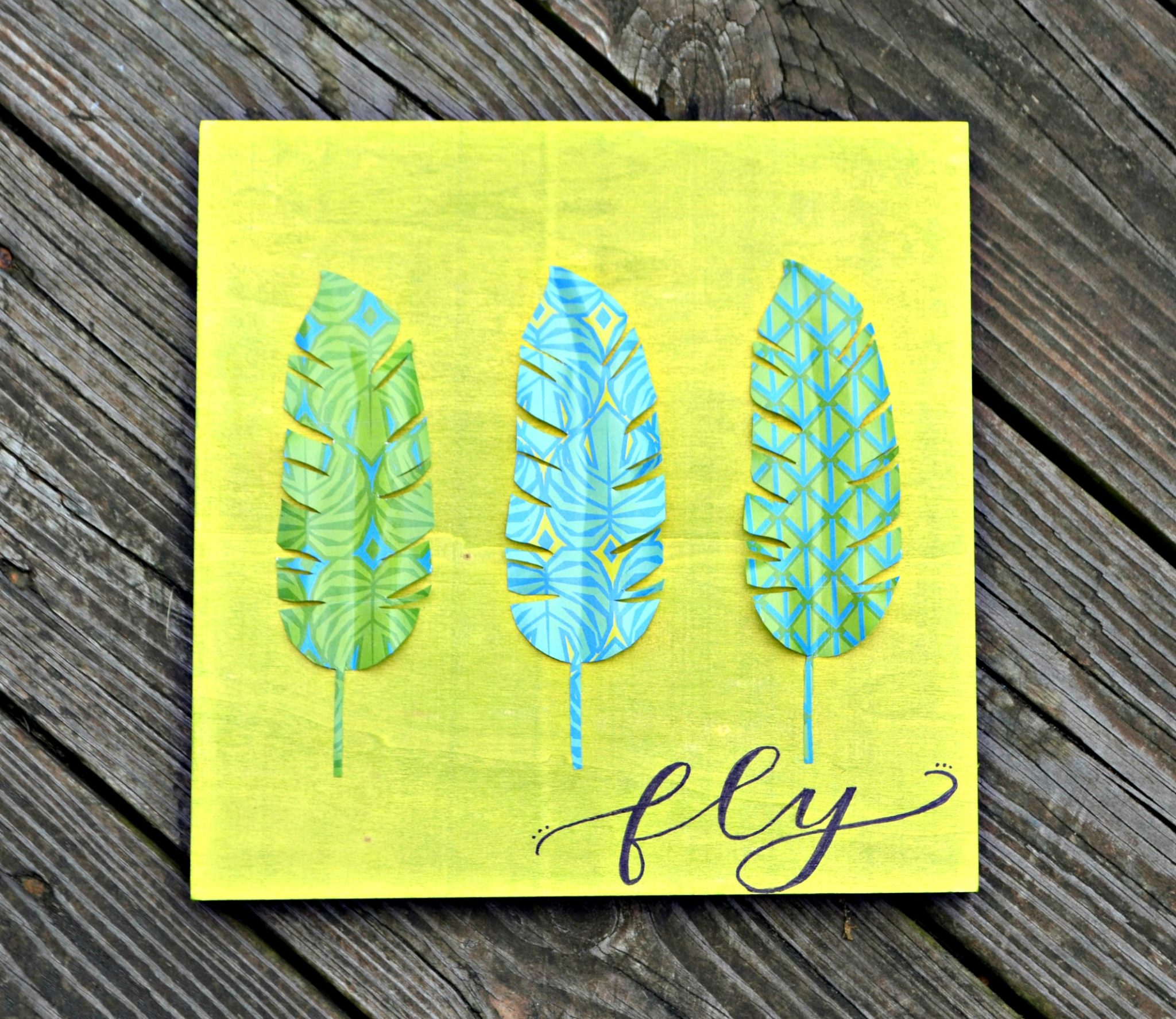 """3D """"Fly"""" Wall Art with Mod Podge"""
