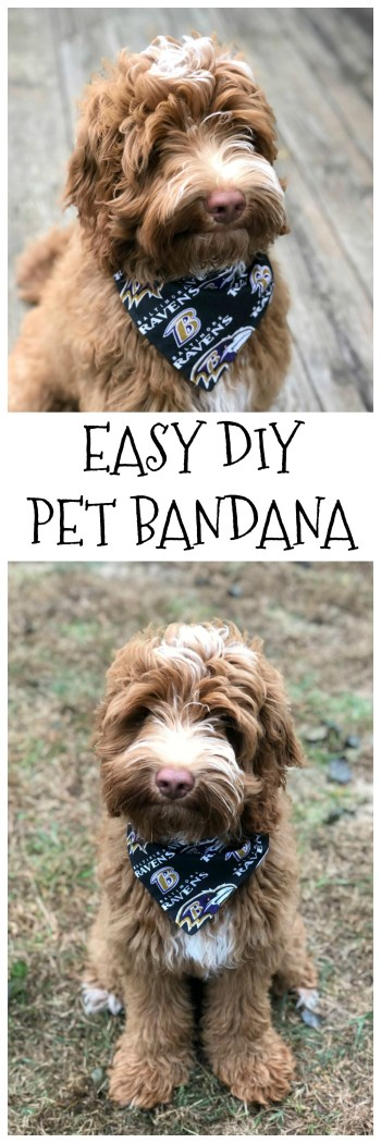 DIY Pet Bandana