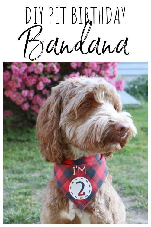 DIY Pet Birthday Bandana