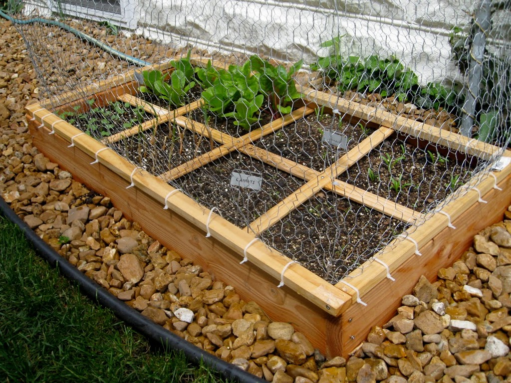 Square foot gardening book - As You Can See In The Picture I Built A Cage To Keep Out Bunnies Squirrels And Birds It Has Worked Beautifully See Square Foot Gardening Book