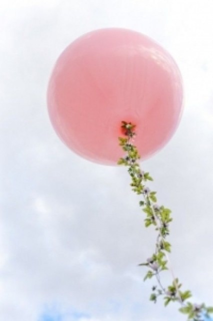 Large pink balloon and blue sky