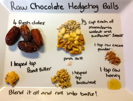 Ingredient list for raw chocolate hedgehog balls