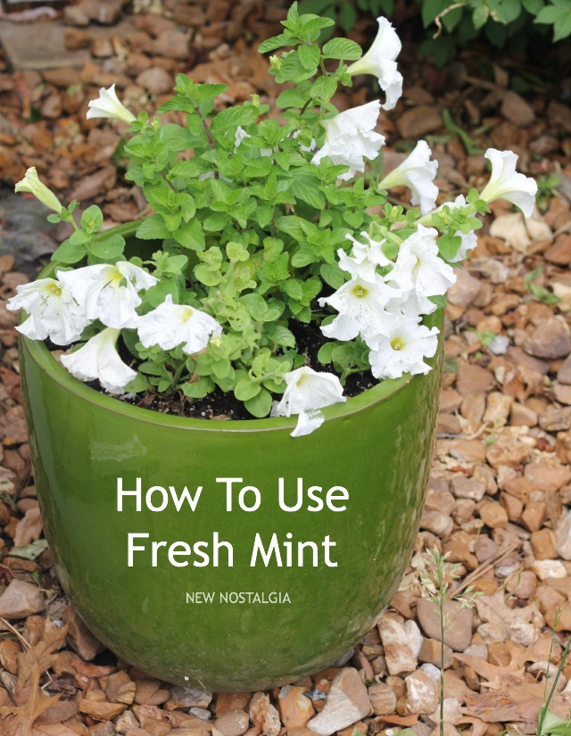 HOW-TO-MINT