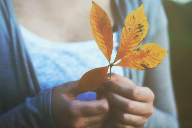 Colsie Leaf 2