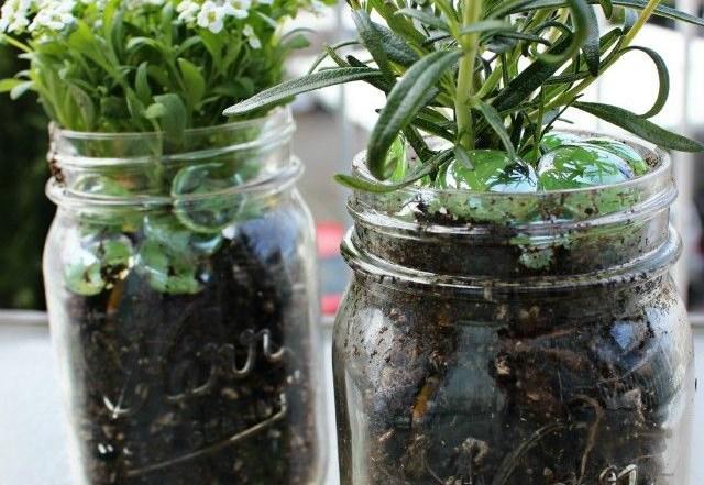 11 Ways To Start Thinking Garden