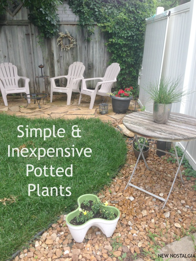 SIMPLE-POTTED-PLANTS